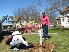Victory Garden Initiative awarded Gingerbread Land a 30-tree orchard grant. Volunteers did the planting.