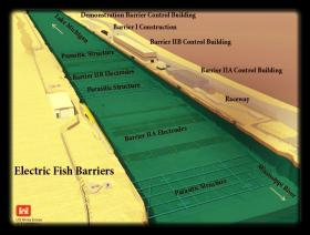 Electric barrier system continues to be cornerstone of Asian carp control plan.