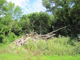 """Debris removed from serpentine """"teeth"""" plunked above east bank of Milwaukee River"""