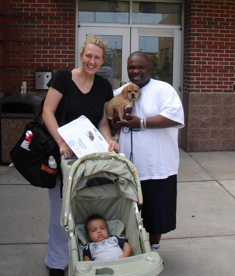 Adopted Puggle Goes Home