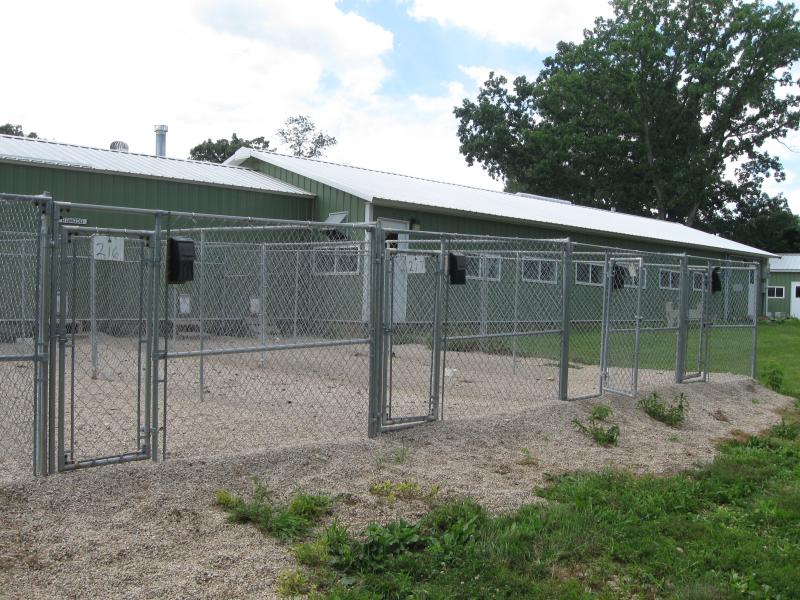 Empty Kennels Remain After Several Dozen Dogs Are Removed