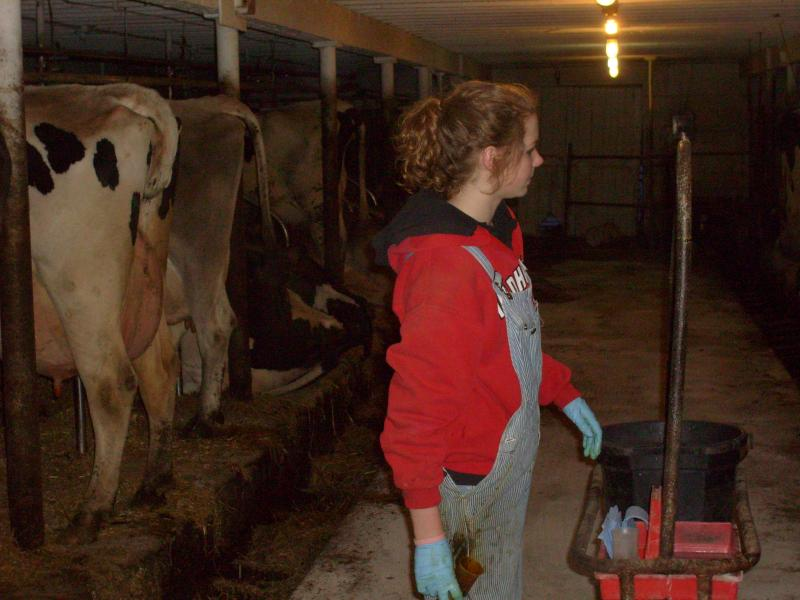 Cassie helping dad Dwight with the 5 p.m. milking