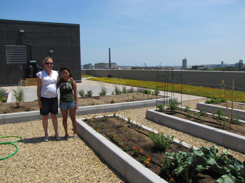 Stephanie Calloway (left) and volunteer Stephanie Contreras survey the rooftop garden's progress.
