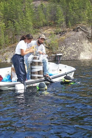 Scientists take samples to measure contaminants