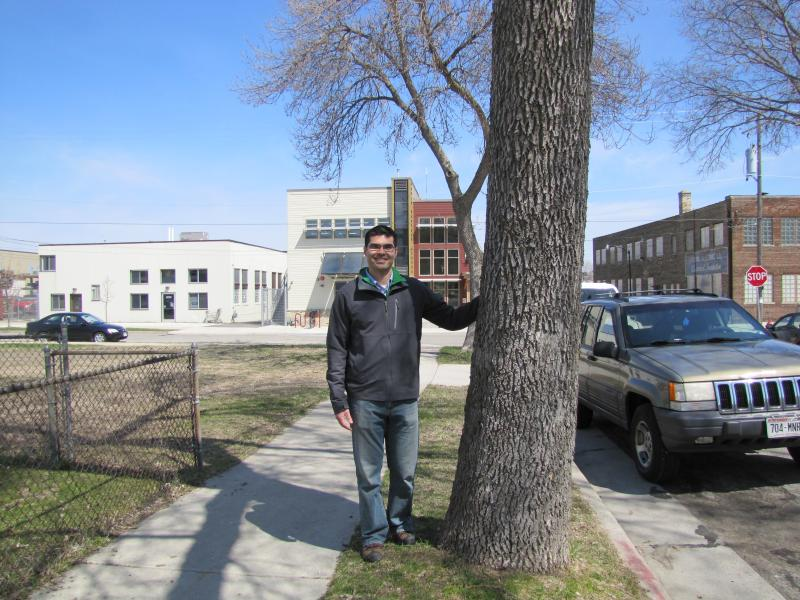 Urban forester Ian Brown's mission is to keep ash canopy alive through City of Milwaukee