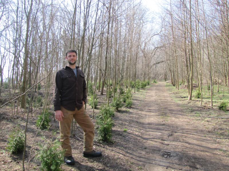 "Land Steward Matt Smith says Schiltz's ""terrace"" area is undergoing agressive invasive removal  - allowing young native trees to get a foothold in its understory."