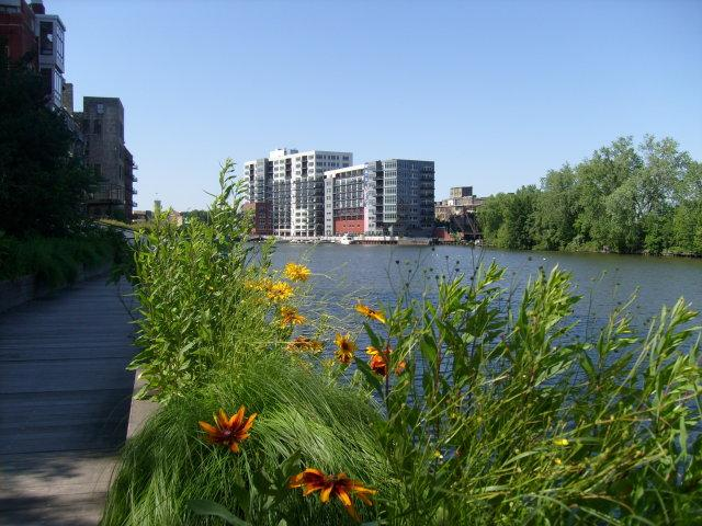 New apartments and landscaping hugs the Milwaukee River.