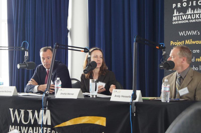 Panelist Shahla Werner speaks