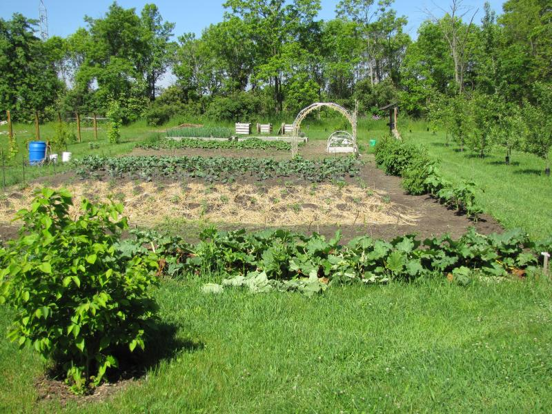 Formerly a hayfield, this orchard is just one the areas where vegetables and fruits are raised.