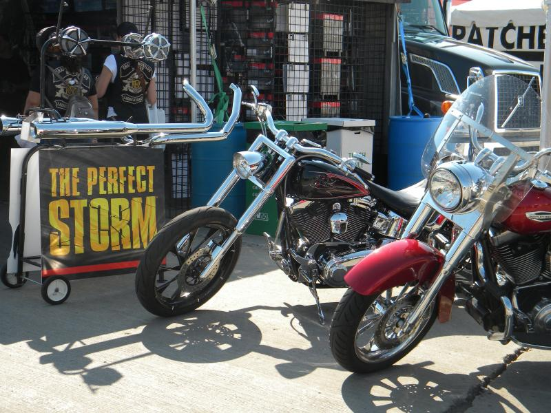 Harley lovers show off their bikes.