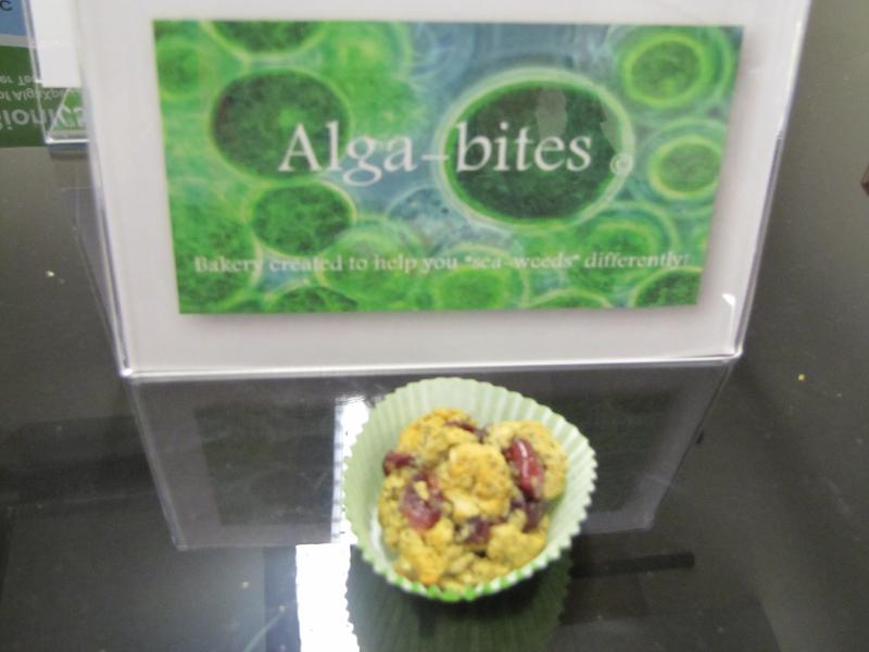 An example of edible algae - Alga-bites served at water center grand opening celebration
