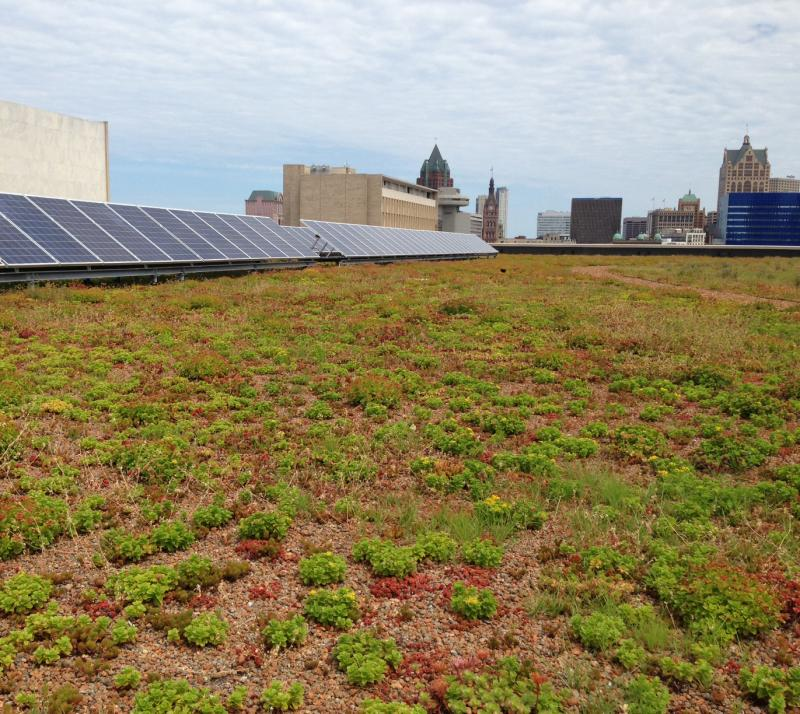 30,000 square foot green roof and solar panels sit a top of Milwaukee's Central Library.