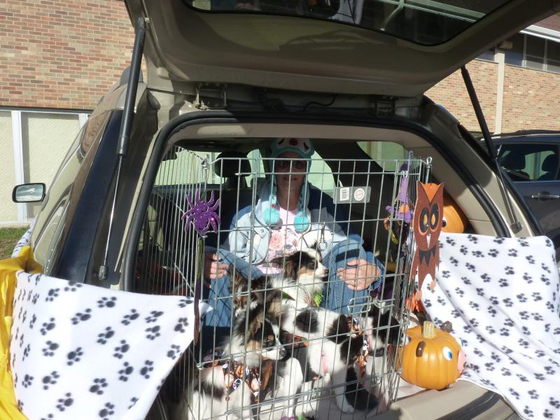 "A ""trunker"" has created a ""puppy pound"" themed car for the Messiah Evangelical Lutheran Church's 2nd annual trunk-or-treat event in Beloit, on Sat. Oct. 26th."