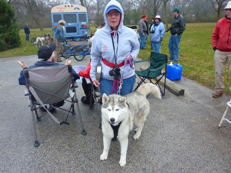 A Door County Sled Dog volunteer with a husky
