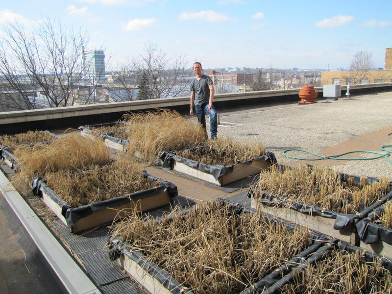 Michael Schläppi at his rooftop paddy system before spring planting began.  Schläppi studied in his native Switzerland before hopping the Atlantic to do postdoctoral work.