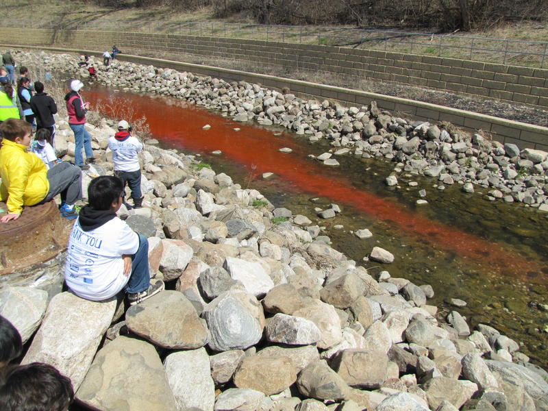 "Peter Levi released red dye into KK on clean up day.  It was also an element of his research ""That gives us an indication for the interaction with the sediment, where you have a lot of microbes to do a lot of the processing of nutrients."""