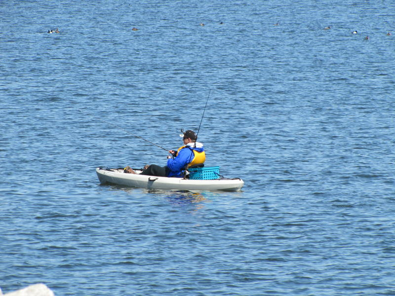 Traveling along Cupertino Park - just north of South Shore - we spot a kayaking angler.