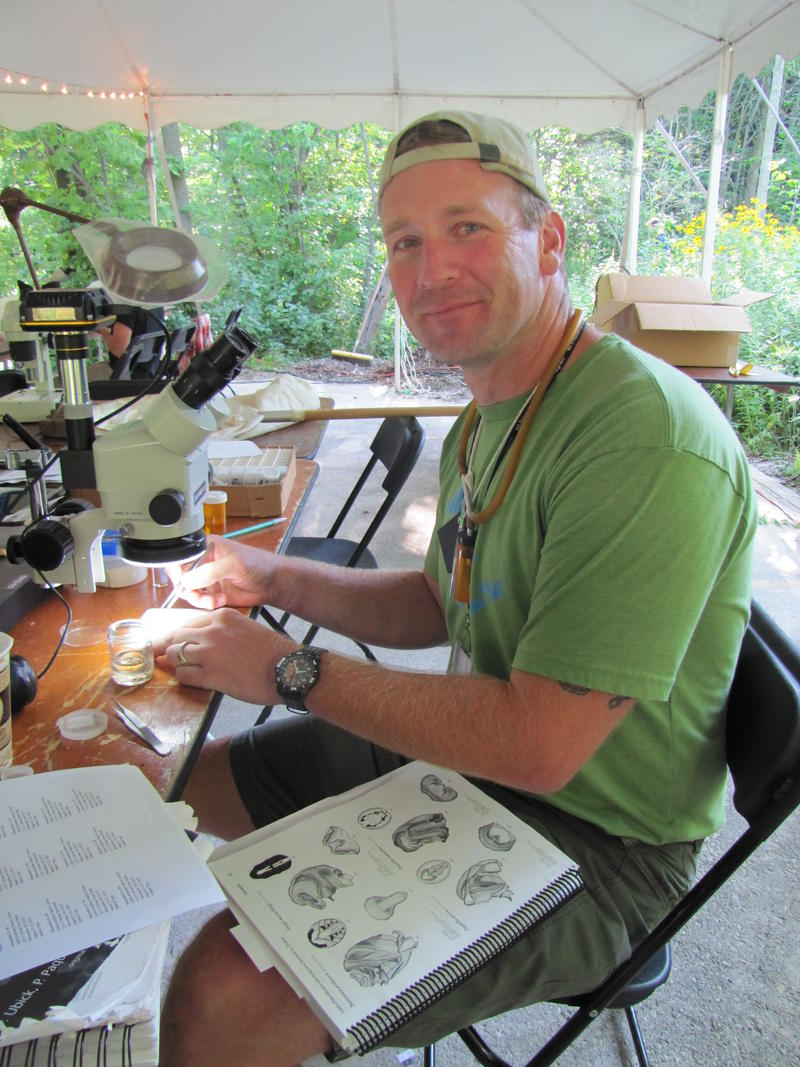 UW-Oshkosh scientist John Dobyns investigates spider species.