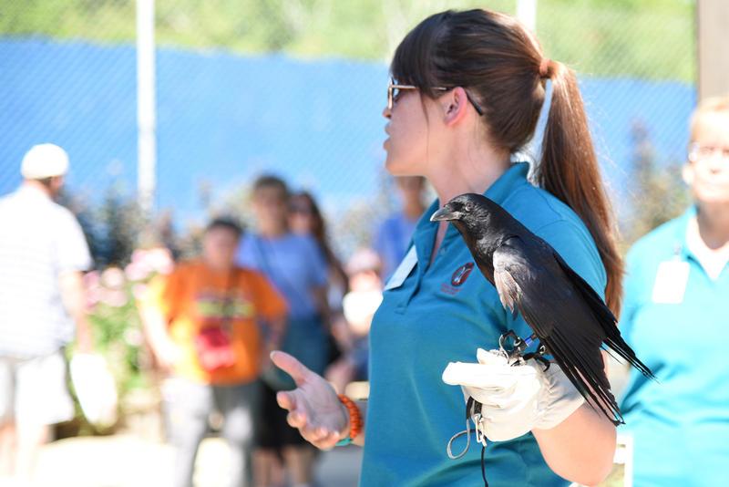 Schlitz Audubon Nature Center Jobs
