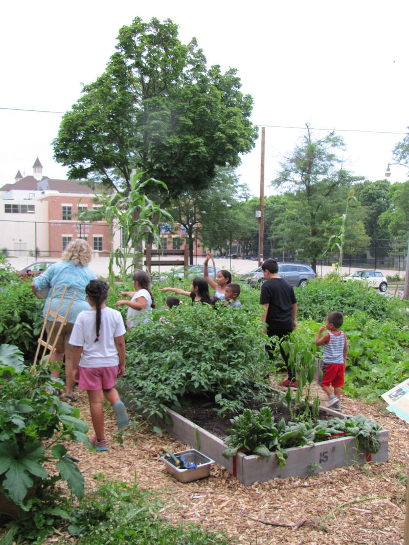 Master gardener coordinator Sharon Morrissey introduces kids to the garden.