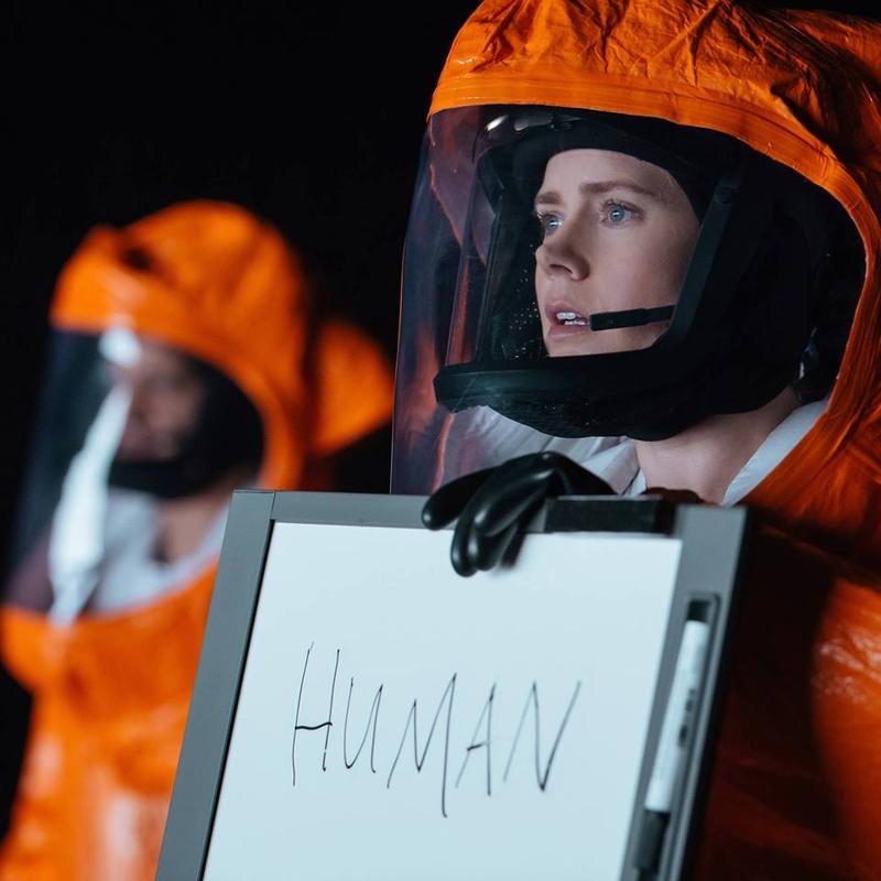 "Amy Adams stars as Linguistics professor Louise Banks in ""Arrival."""