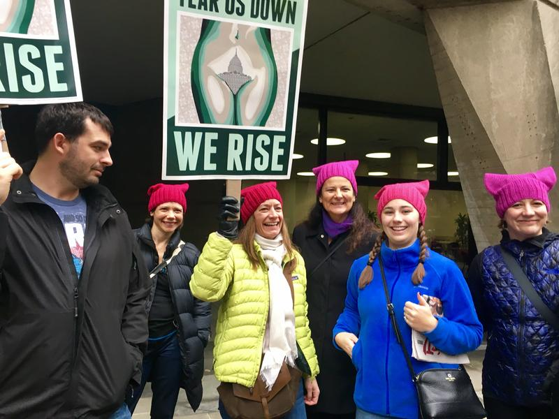 A group from Milwaukee, carrying posters based on local artist Niki Johnson's piece, 'Hills & Valleys.'