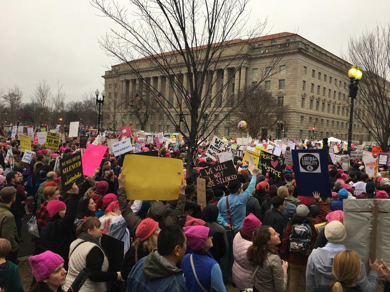 Protesters at the Women's March on Washington, in Washington D.C.