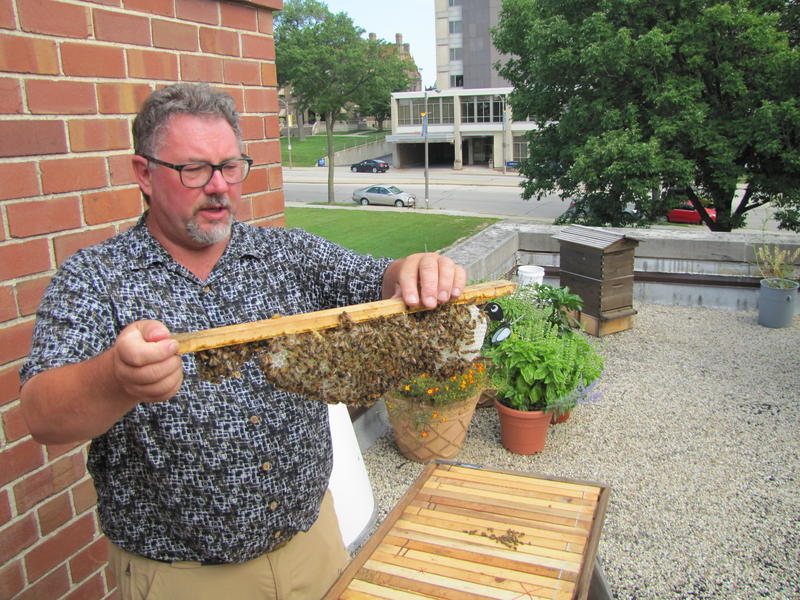 Charlie Koenen holding a piece of the system he designed.  In the background is what is called a flow hive Koenen is testing.