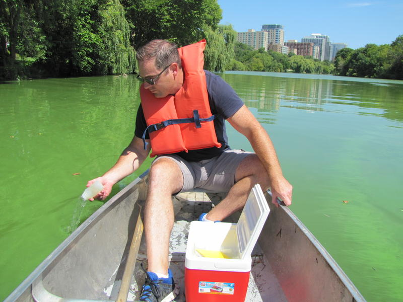 Scientist Todd Miller gathering water samples from Veterans Park lagoon this Tuesday.