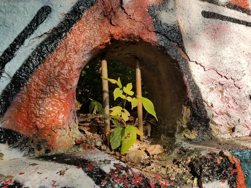 Evidence of where the Gordon Park Bathhouse once stood.