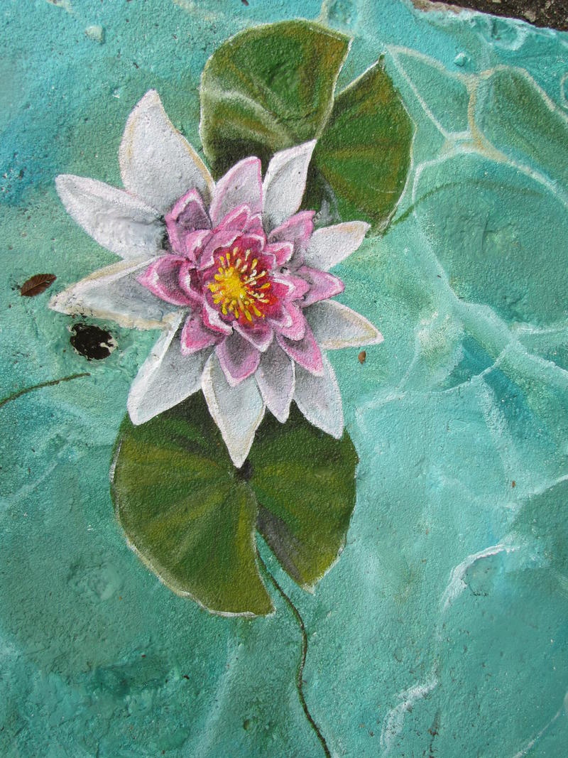 Czarnecki added water lilies.