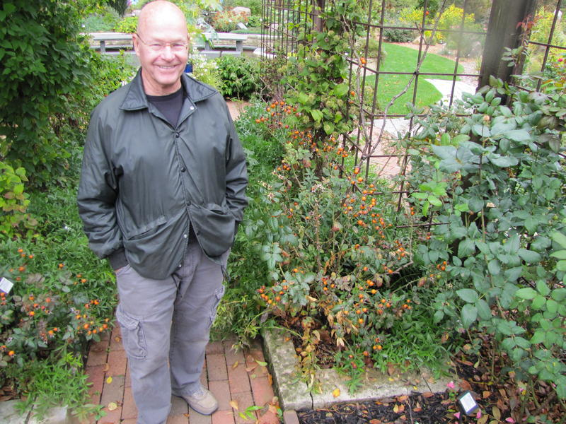 "Late autumn, Will Radler in his garden with his Winners Circle climbing roses. ""One of my dreams is to create the first ever blooming roses that people are going to want to buy because of the hips."" He list of dreams is endless."