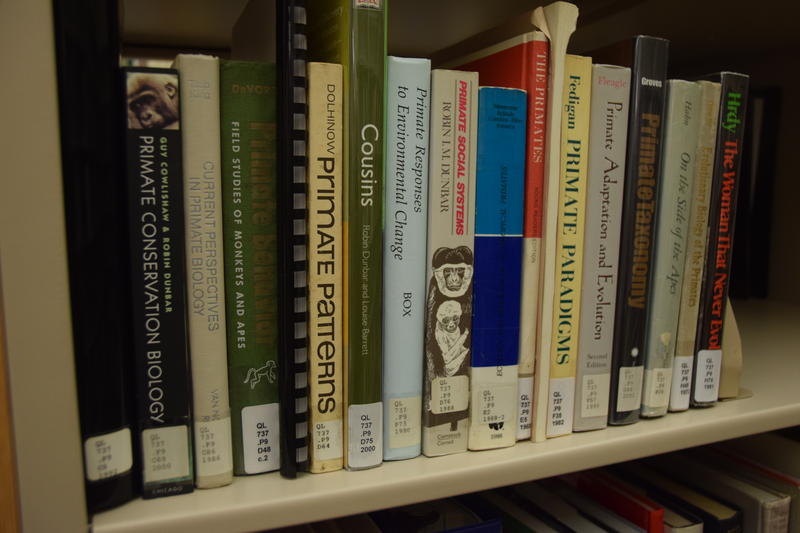 Even at a zoo library, patrons need to be familiar with the Dewey Decimal system.