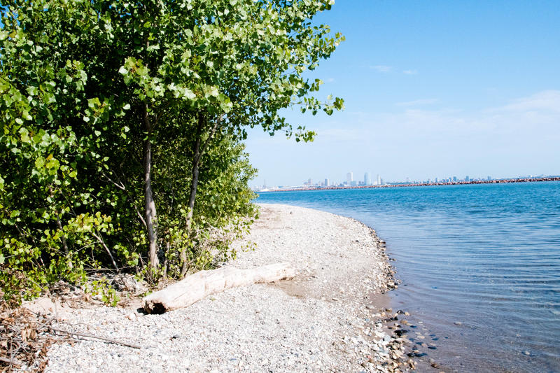 Lake Michigan beaches, like this one in Bay View, aren't strangers to litter.
