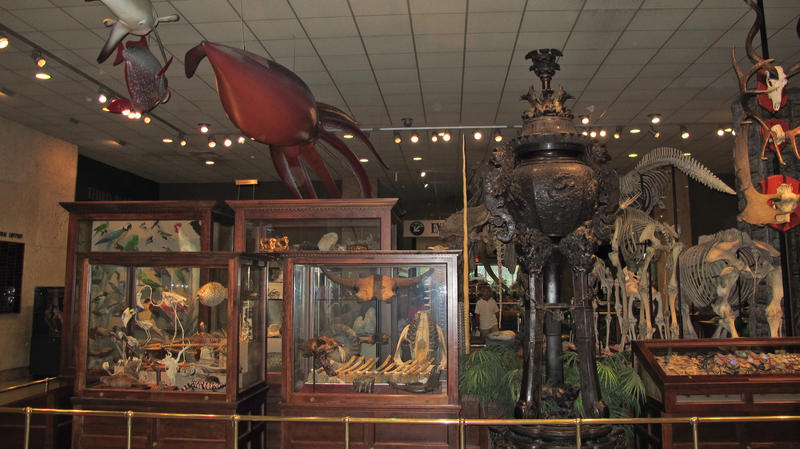 Some say the Milwaukee Public Museum (shown here) is outdated and inadequate for a modern museum. Turns out that problem exists in parks and other cultural institutions in Milwaukee County.