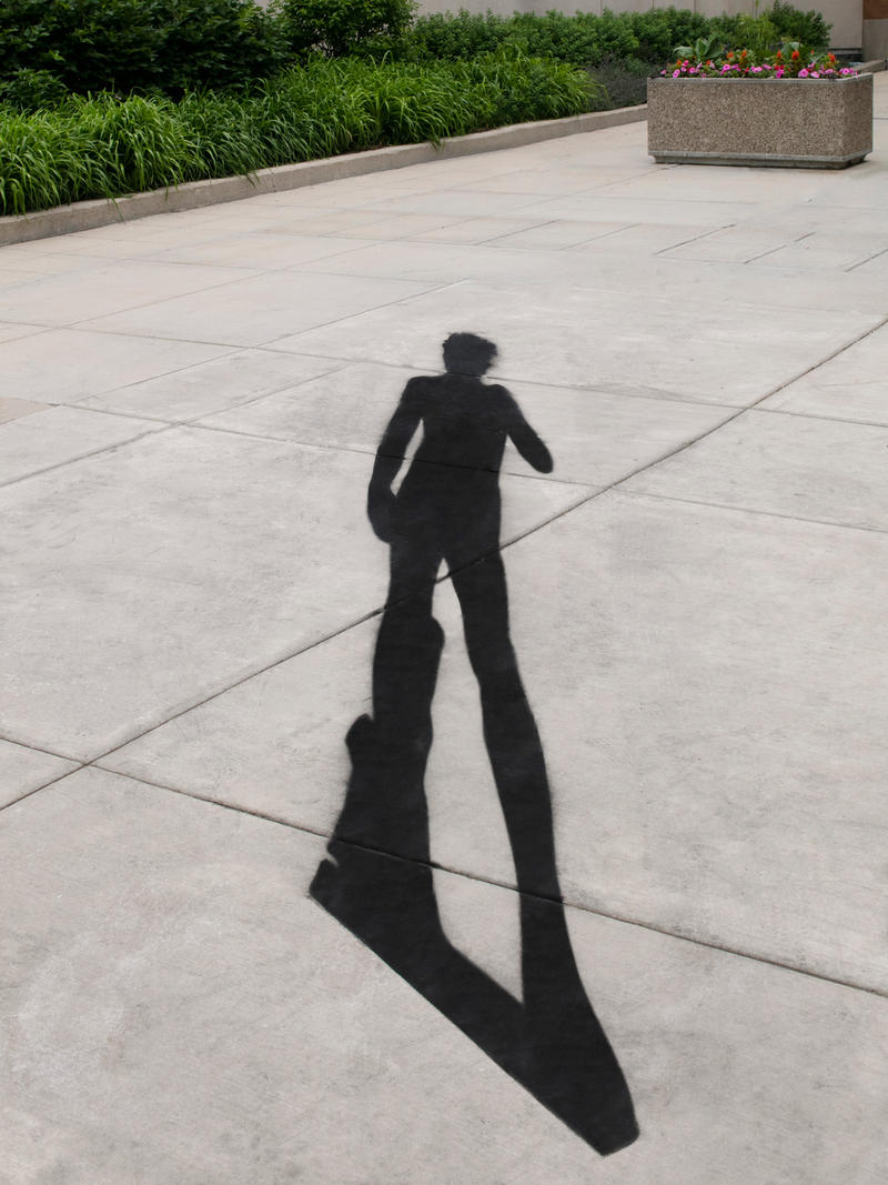 Ana Prvački, Stealing Shadows, Michelangelo, 2007, paint, dimensions variable.