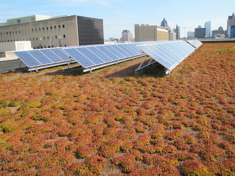 solar-panels-milwaukee-library-climate-change