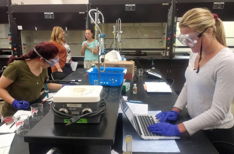 Alverno College students work in a class lab led by biochemistry professor Heather Mernitz.