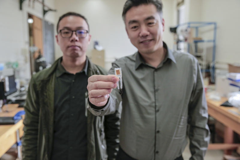 (From left) Graduate student Guang Yao and lead researcher Dr. Xudong Wang hold a small implantable device that helped rats lose 40 percent of their body weights.