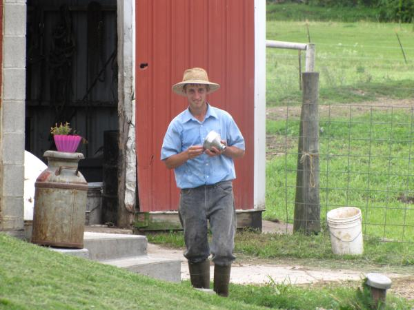 Hershberger's eldest son, Stephen, after evening milking chores are complete.
