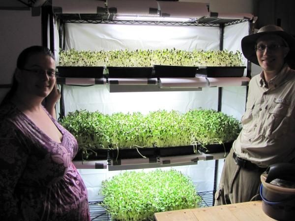 Hillery and Tony Farrell have international aspirations for their sunflower greens system.
