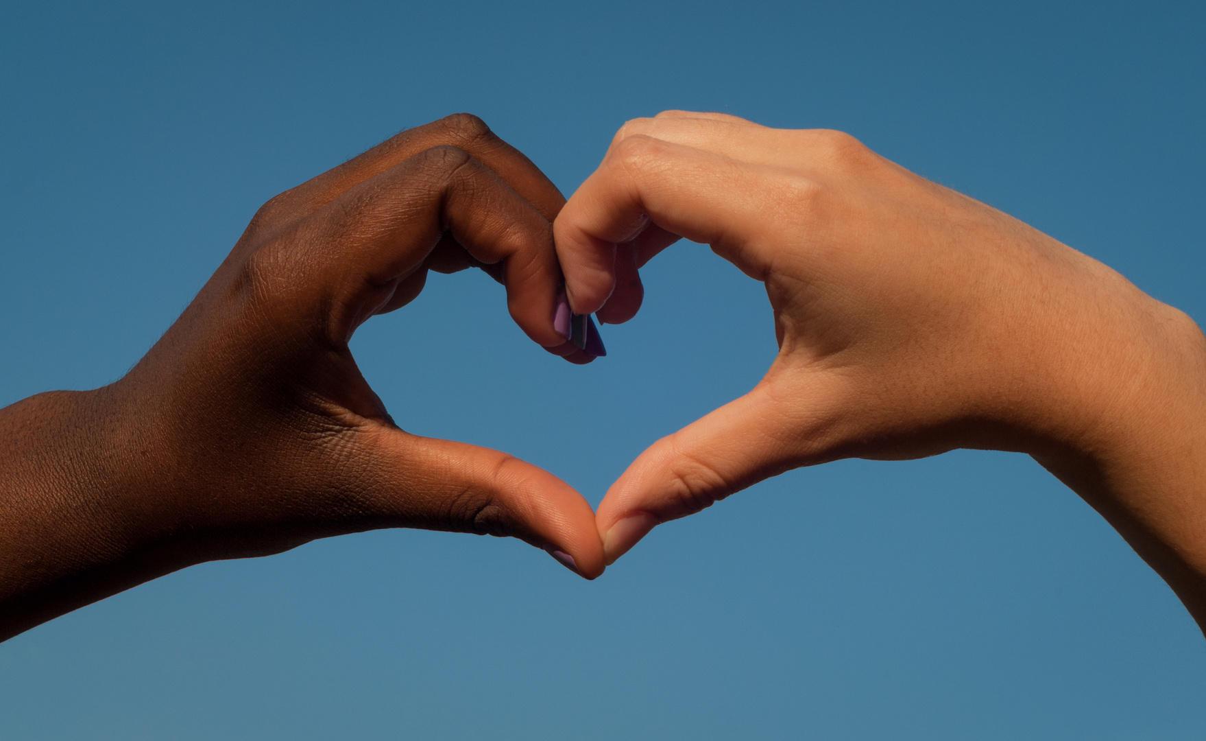 essay bridging america s racial divide  essay bridging america s racial divide