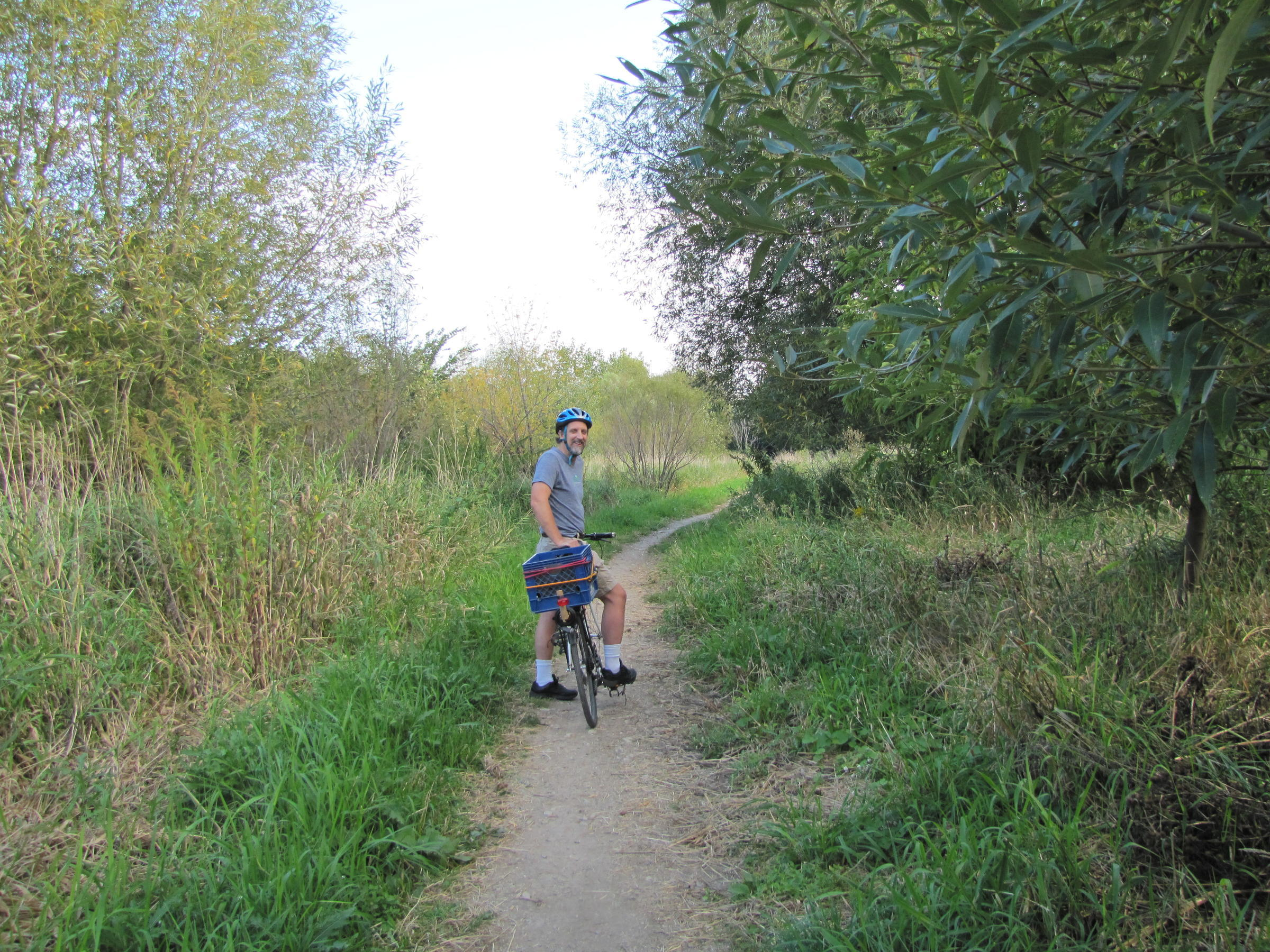 Walking with children and urban ecology
