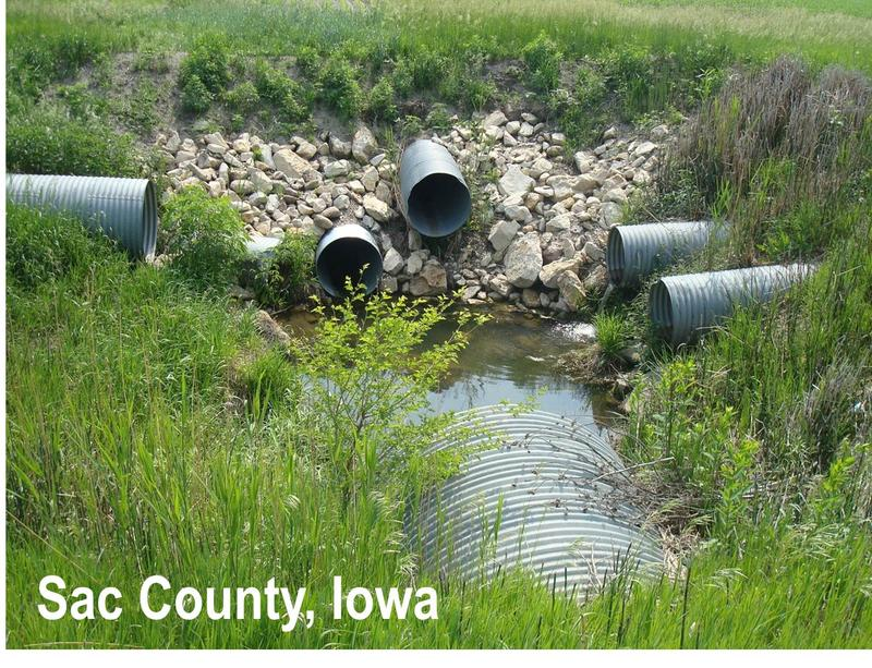 A ditch adjacent to fields in Sac Co., Iowa where several pipes drain runoff