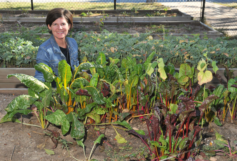Amy Wine oversees the Farm to School program at McKinley Elementary School in Davenport.