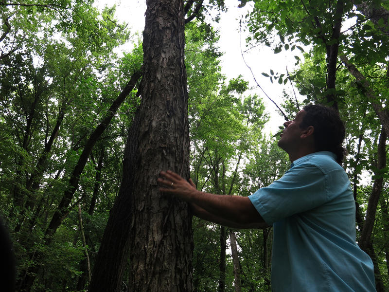 Eric Anderson at the Milan Bottoms Preserve