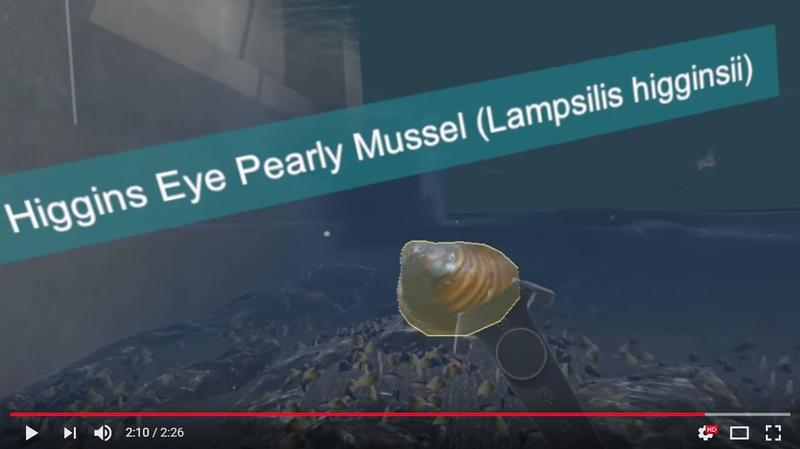 Video screenshot, example of underwater, interactive virtual reality