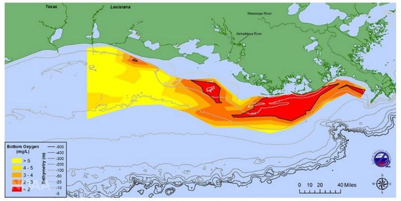 "A graphical representation of the Gulf of Mexico ""dead zone,"" 7/31/2018"