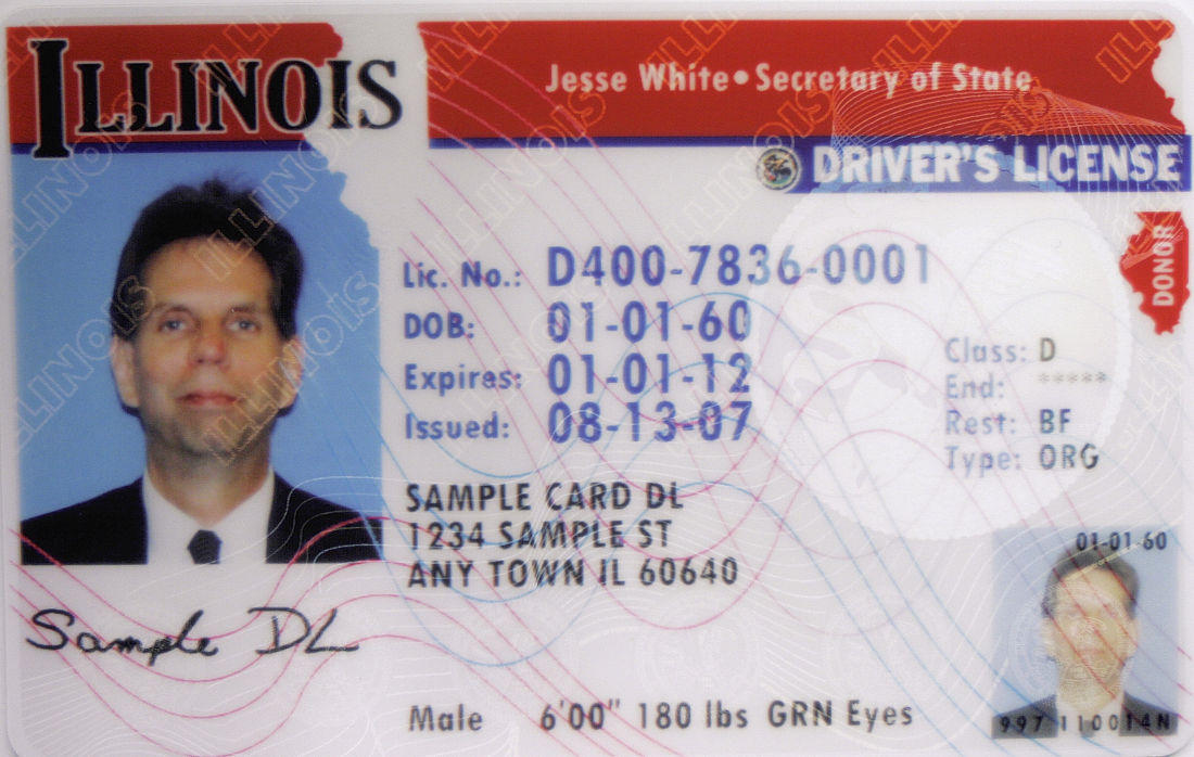 renewing illinois drivers license military