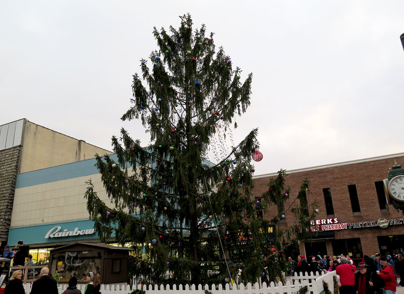 PA's Own Charlie Brown Christmas Tree, W.Va.'s Frosty The